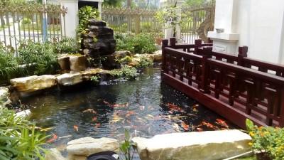 Hồ koi đẹp tại Đường Hoa Phượng – Vinhom River