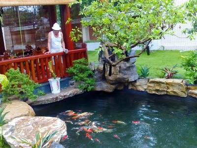 Thiết kế và thi công cảnh quan và hồ cá Koi tại khu đô thị Xa La