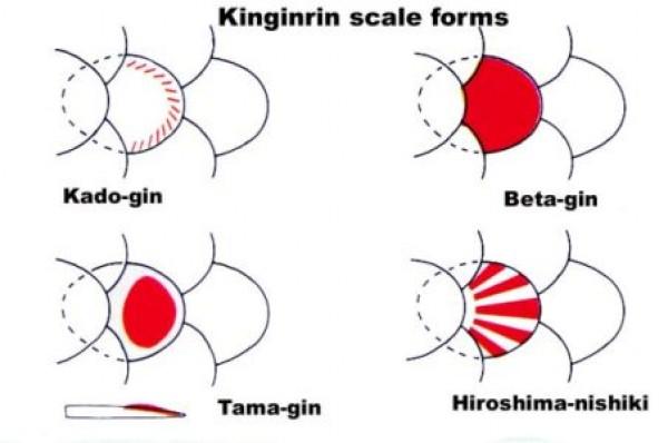 Kin Gin Rin